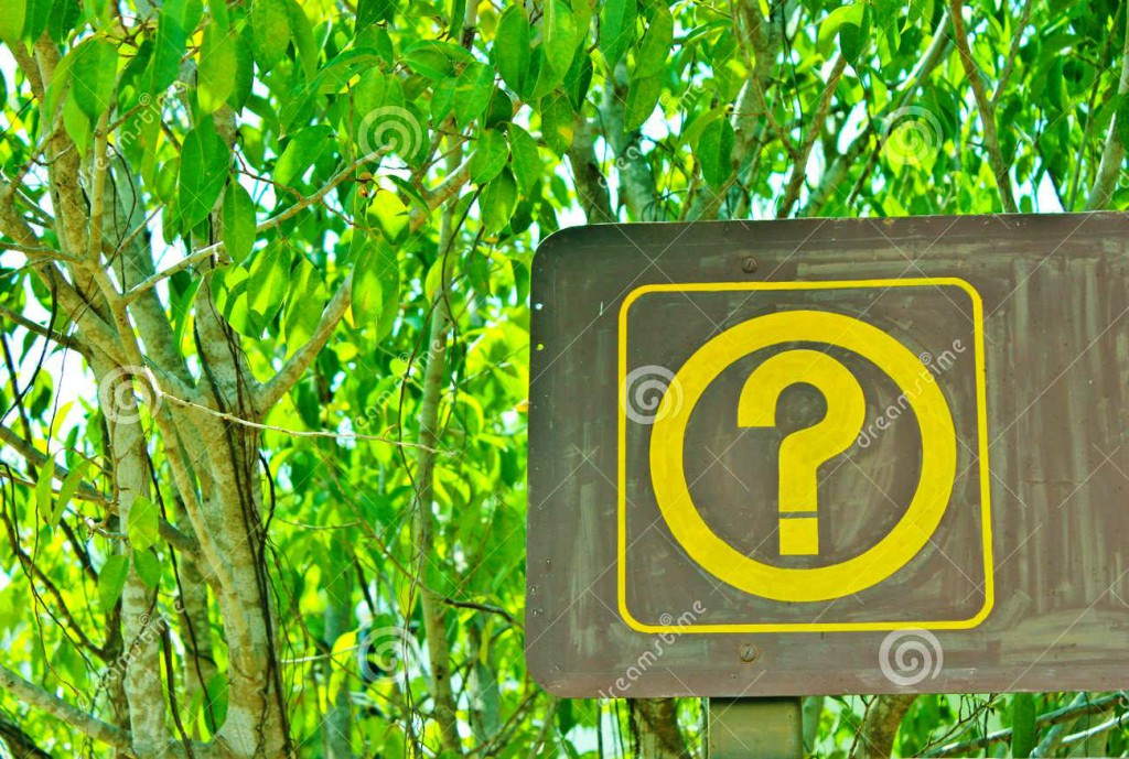 http://www.dreamstime.com/royalty-free-stock-photo-question-mark-image29699905